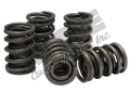 OE Replacement Springs 525EFI, 600SCI, 700SCI - Price Per Spring